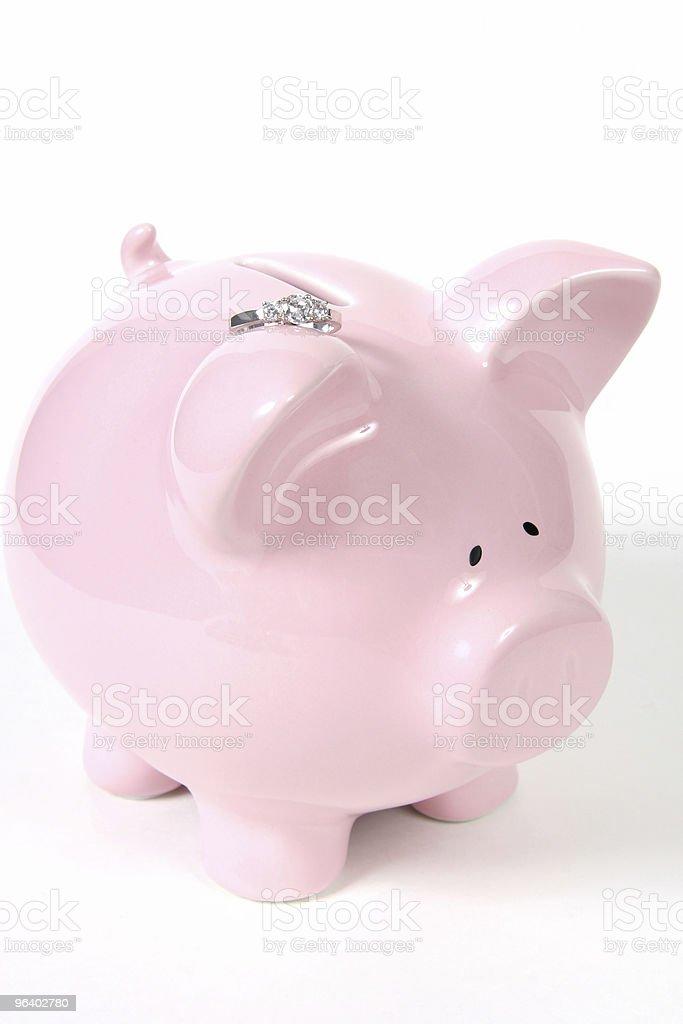 Saving for Wedding - Royalty-free Animal Stock Photo