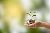 istock Saving, Investment concept. Hand holding Coin in a glass jar with growing tree with green nature as background. Conceptual save money for the future. 924720232