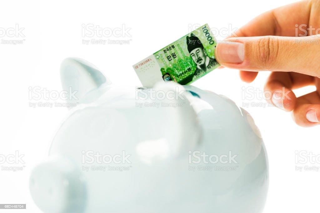 Saving money with a piggy bank, Korean won stock photo