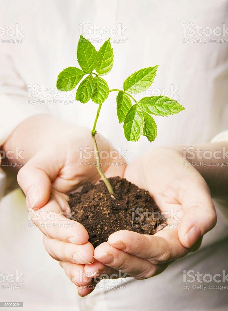 Saving the planet royalty-free stock photo