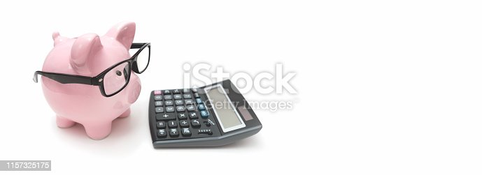 istock Savings and budget concept with piggy bank 1157325175