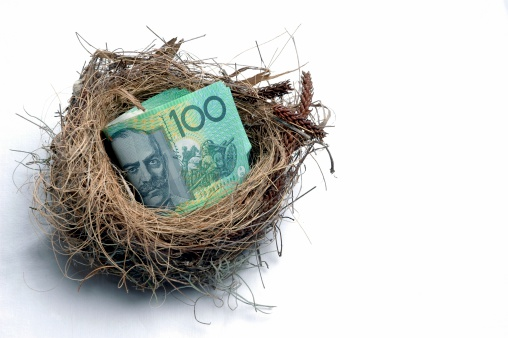 Savings nest egg concept. Click to see more...