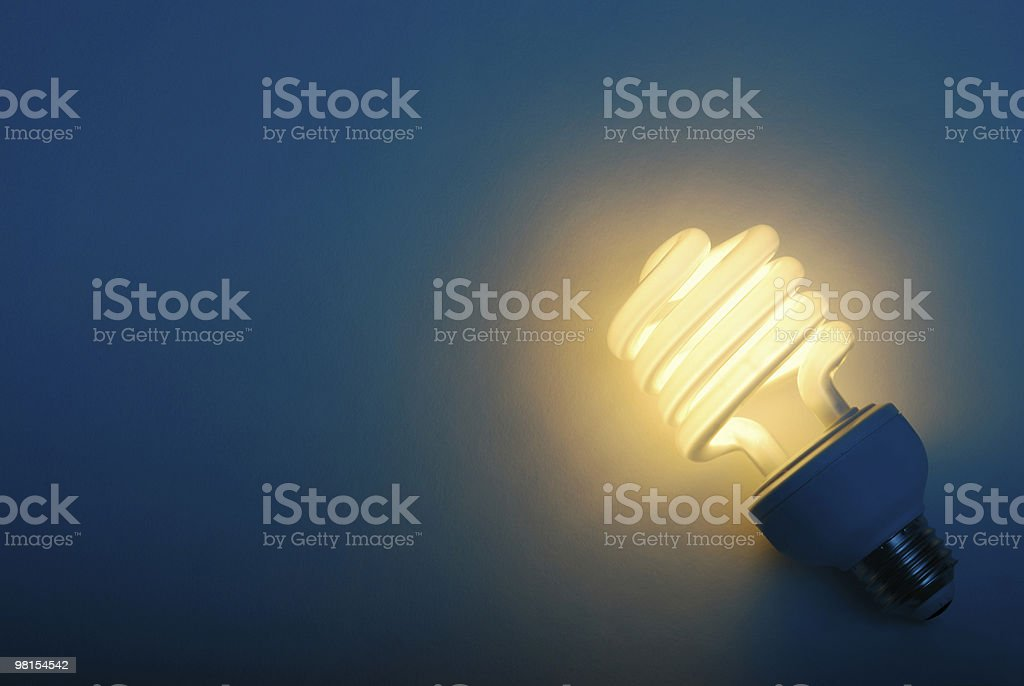 Savings with Efficient Compact Fluorescent Light Bulb stock photo