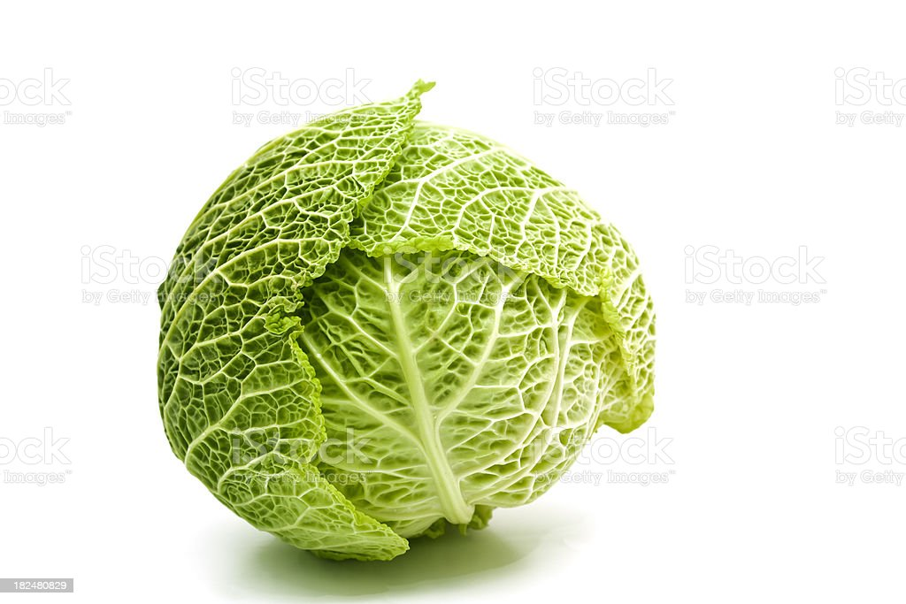 savoy cabbage royalty-free stock photo