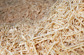Sawdust or wood dust texture background, Sawdust close up