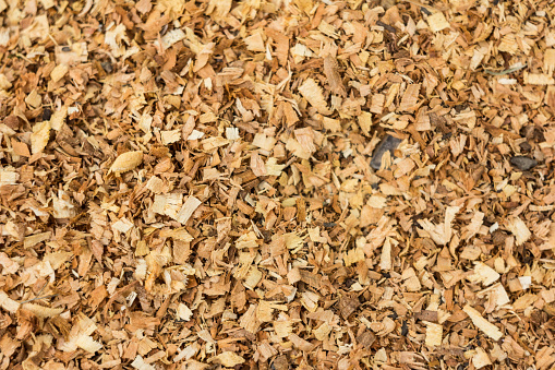 Dry wood shavings background. Wood dust texture. Sawdust pattern closeup. Sawdust floor texture. Top view. Sawdust close up . Wood industry concept. Eco energy design. Place for text.