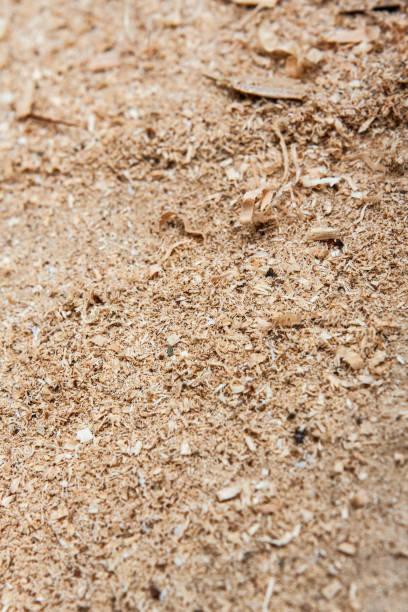 Sawdust portrait stock photo