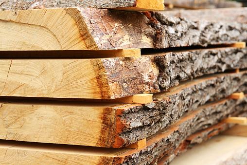 Sawed oak tree trunk plank being dried