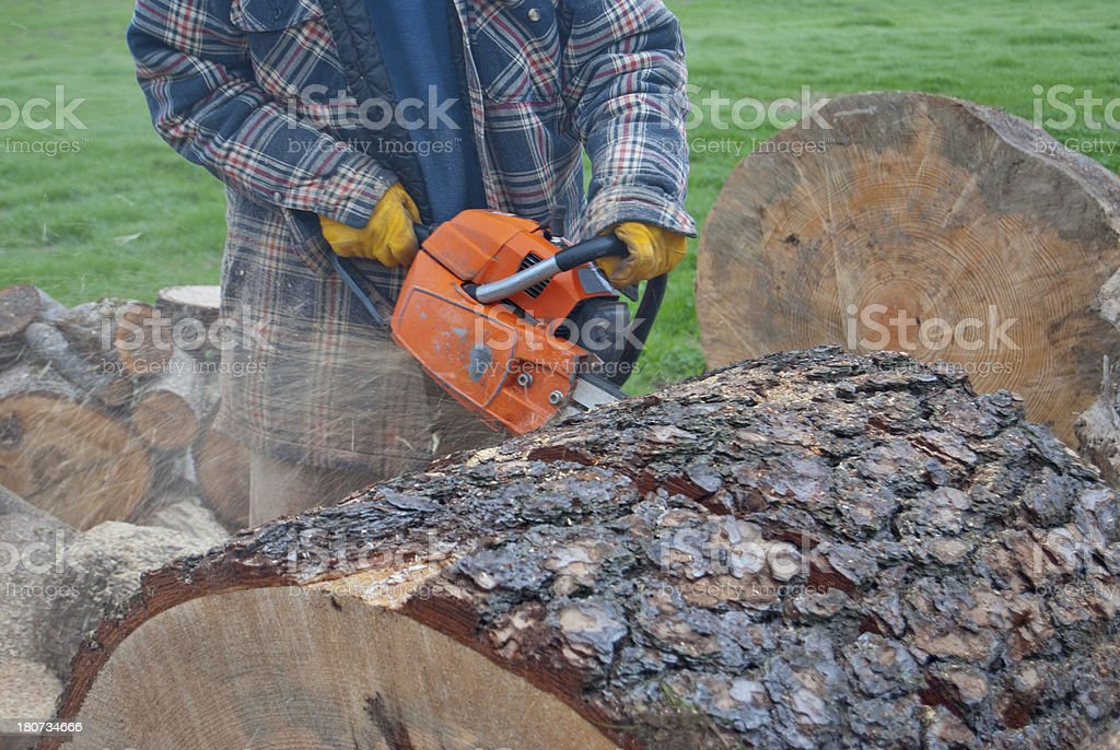 Sawing a Log royalty-free stock photo