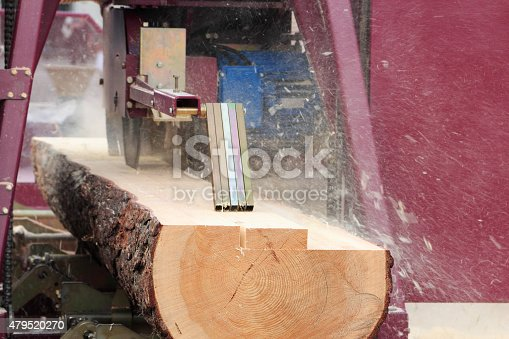 Sawing boards from logs with modern sawmill.
