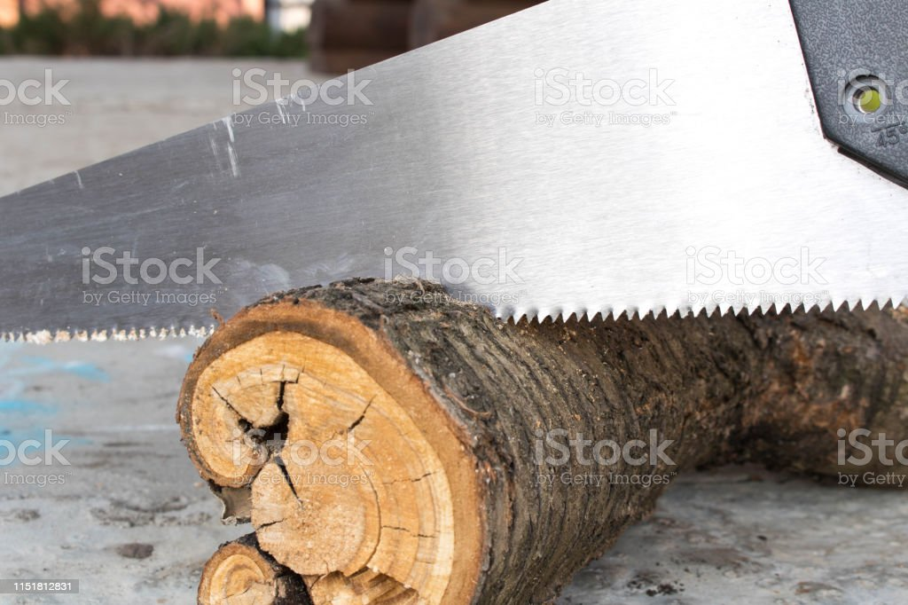 Sawing logs with a hand saw in the backyard. Close up