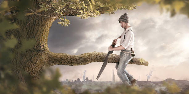 Sawing off the branch you are sitting on A man is sitting on a branch he is about to cut off. The background shows an industrial area which is polluting the surroundings. Thus the image conveys a secondary meaning towards environmental pollution. mistake stock pictures, royalty-free photos & images