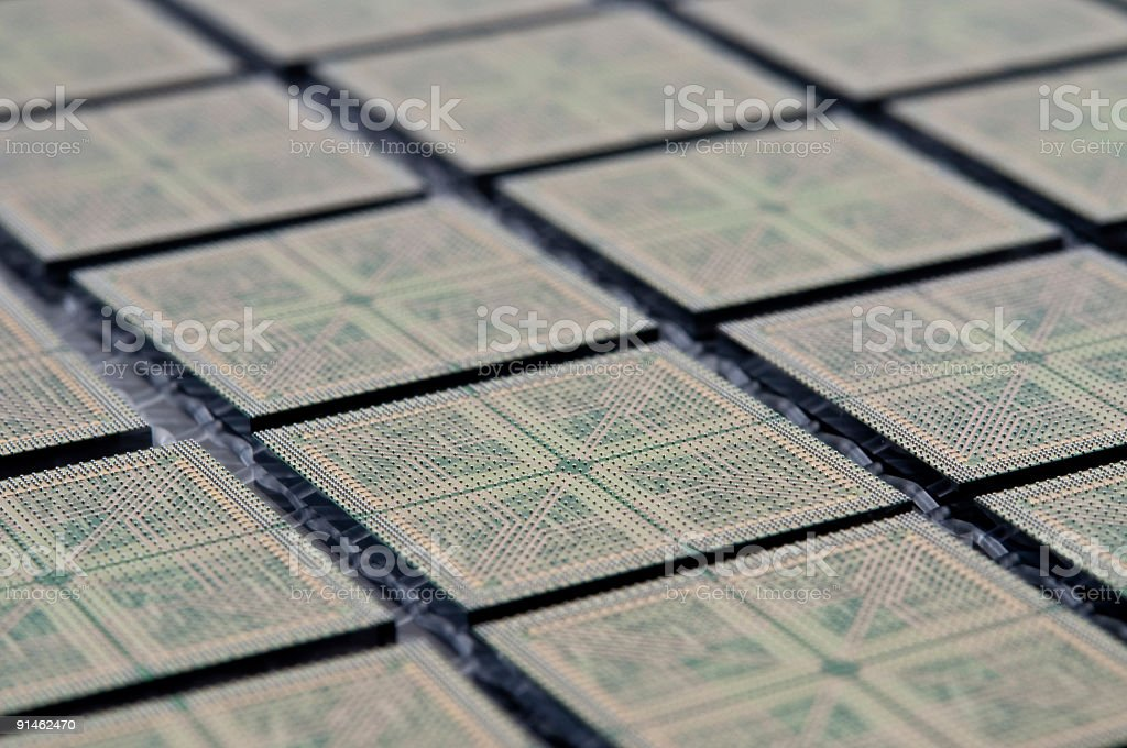 Sawn and bumped  microchips on a chip carrier. royalty-free stock photo