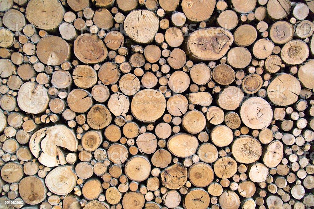 Sawn Timber Logs stock photo