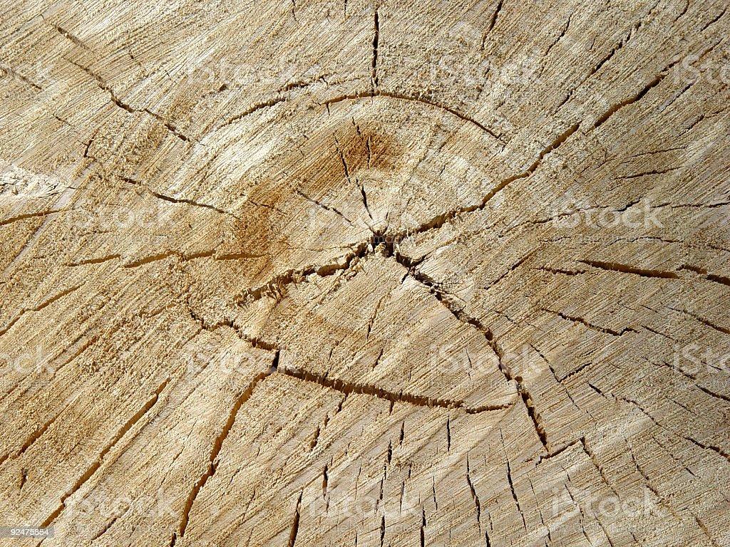 Sawn wood royalty-free stock photo
