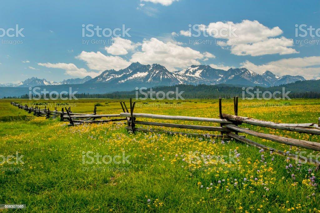 Sawtooth Mountains and Meadow, Idaho stock photo