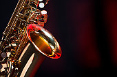 Alto saxophone. Camera: Canon EOS 1Ds Mark III.