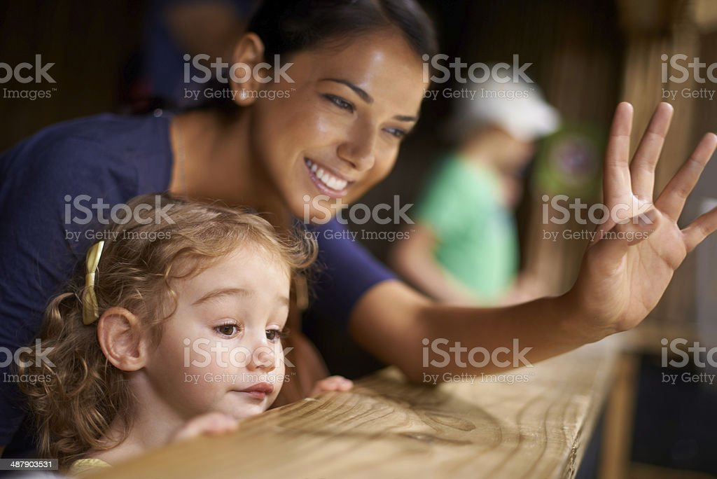 Saying hi to the cute animals, sweetie stock photo