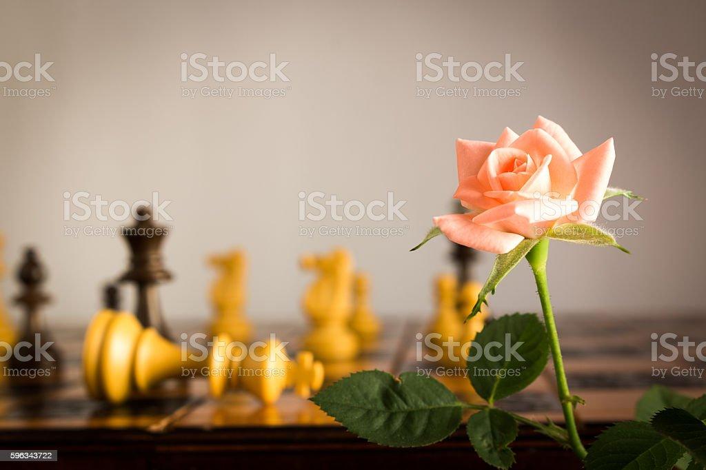 Scacchi fotografati su una scacchiera royalty-free stock photo