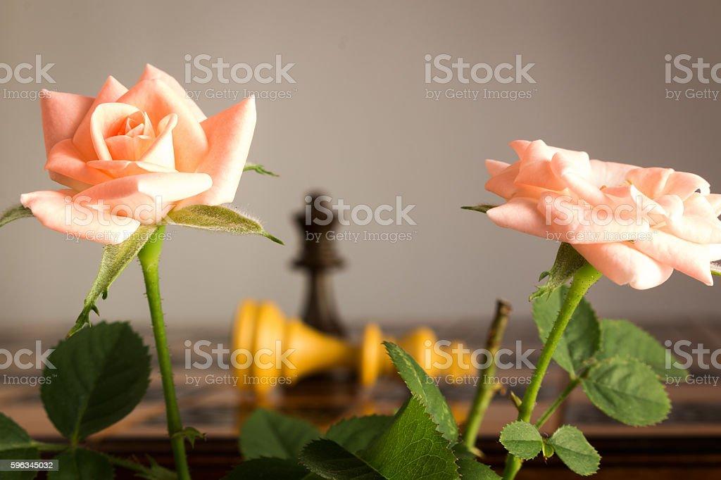 Scacchi Fotografati Su Una scacchiera Lizenzfreies stock-foto