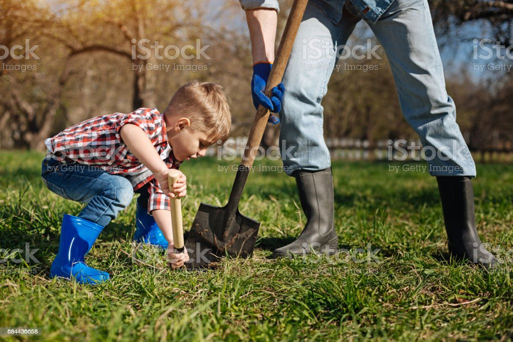 Scaled up shot of little family helper in garden stock photo