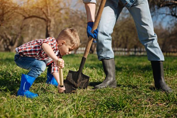 Scaled up shot of little family helper in garden stock photo