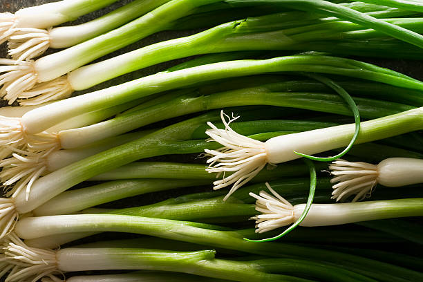 Scallions stock photo