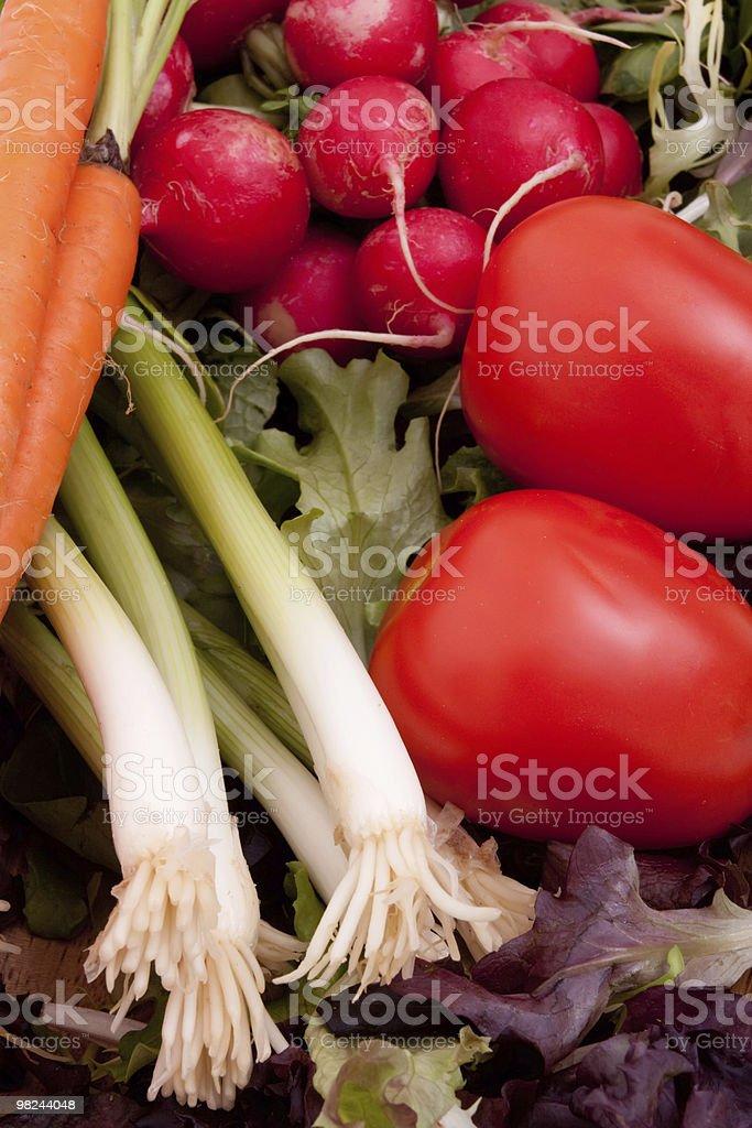 Scallions, tomato, radish and carrots royalty-free stock photo