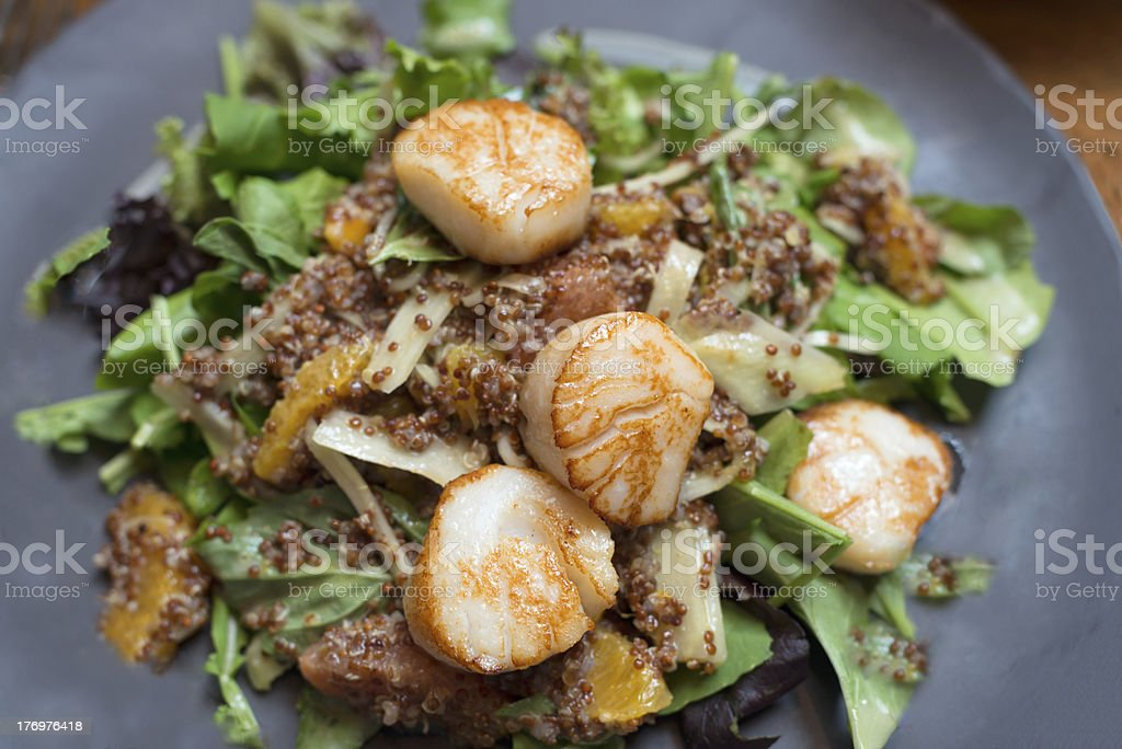 Scallop Salad with Quinoa, Oranges & Grapefruit royalty-free stock photo