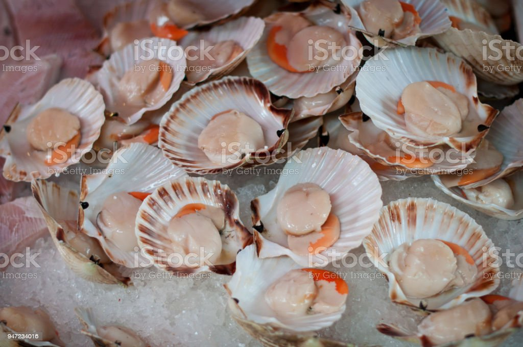 scallops at Venice market for sale stock photo