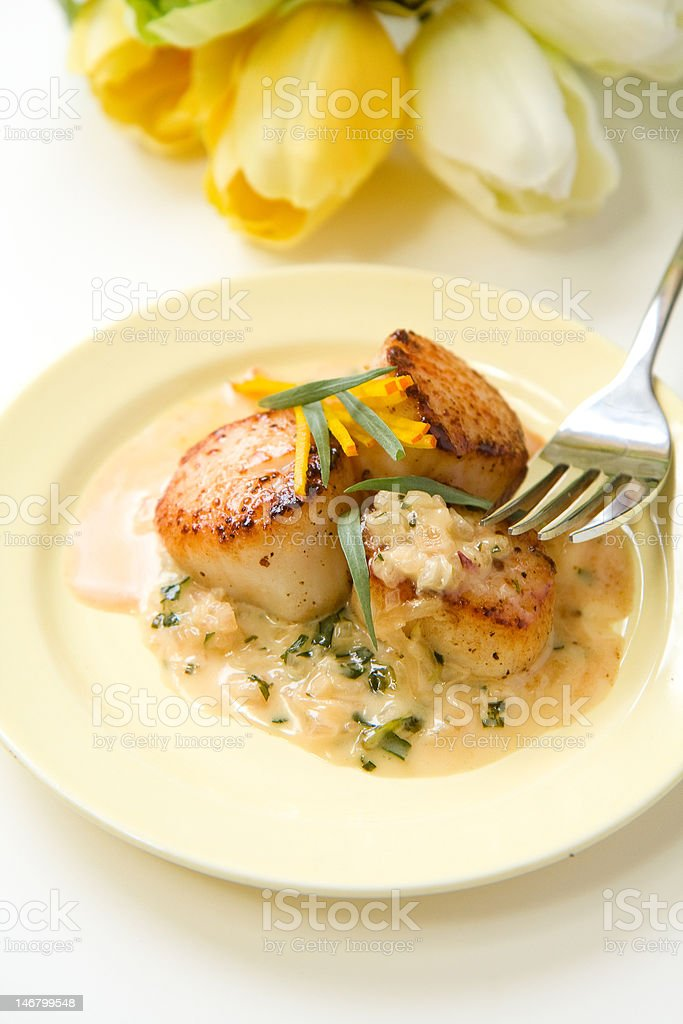 Scallops in tarragon cream sauce royalty-free stock photo