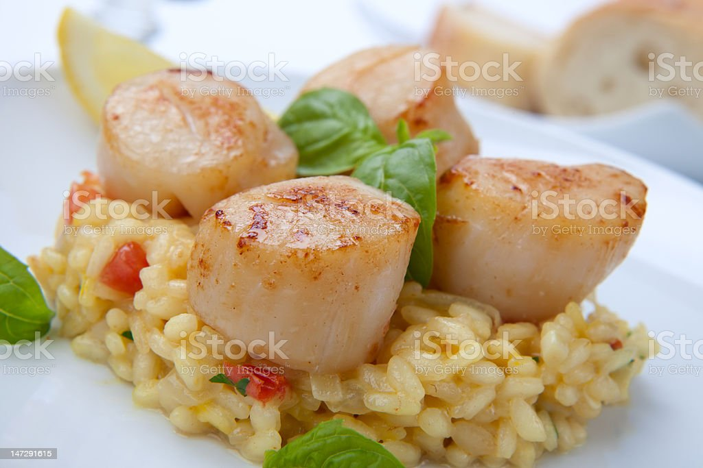 Scallops Risotto stock photo
