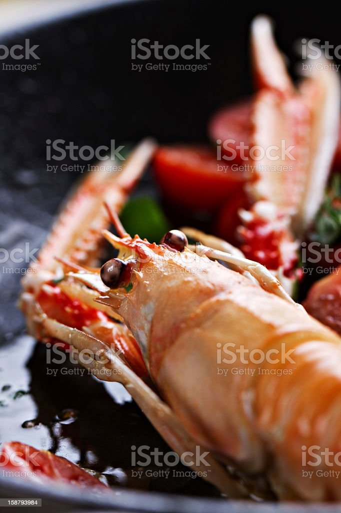 Scampi cooked with tomatoes and parsley royalty-free stock photo