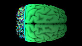 istock MRI scan of the brain in the color green 1192186225