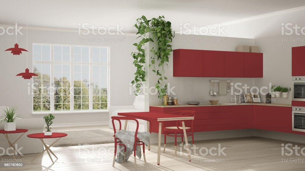 Scandinavian Red Minimalist Living With Kitchen Open Space One Room