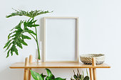 Minimalistic home interior with composition of home garden. Plants love.