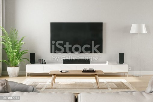 Cozy scandinavian stlye living room with home entertainment center.