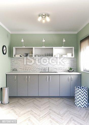 istock Scandinavian Utility Room 837397472