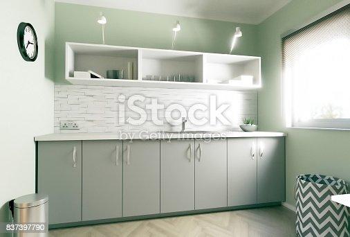 istock Scandinavian Utility Room 837397790