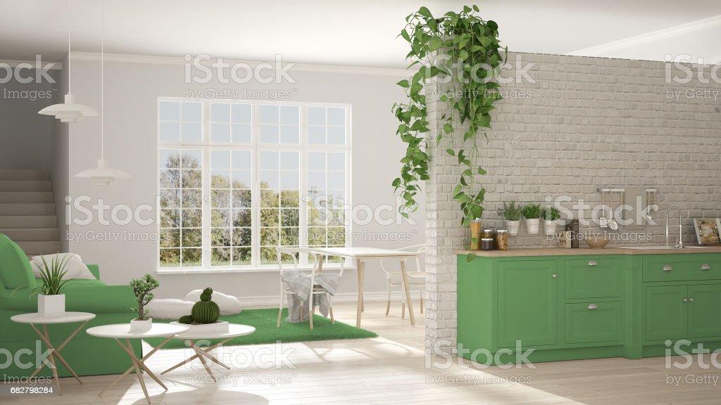 Wunderbar Minimalista Escandinava De Branca E Verde, Vivendo Com Cozinha, Espaço  Aberto, Um Apartamento