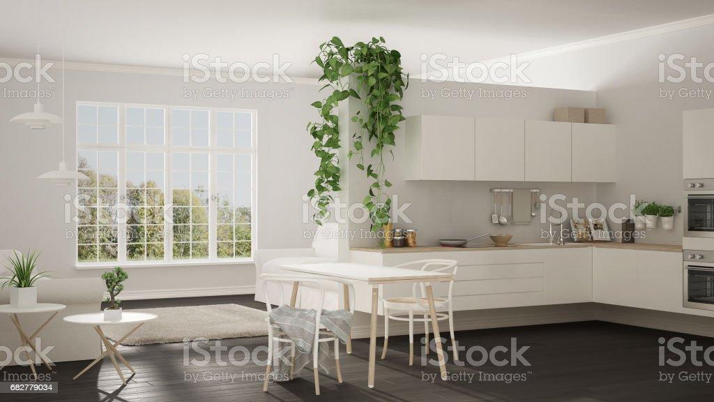 Fantastisch Escandinava Minimalista Branca Vivendo Com Cozinha, Espaço Aberto, Um  Apartamento De Quarto, Design