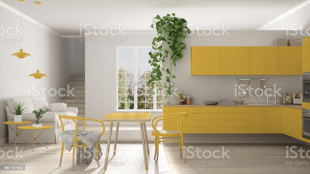 Escandinava Minimalista Amarela Vivendo Com Cozinha, Espaço Aberto, Um  Apartamento De Quarto, Design
