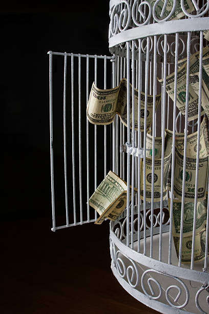 scaping dollar bills escaping from a birdcage  dilapidate stock pictures, royalty-free photos & images