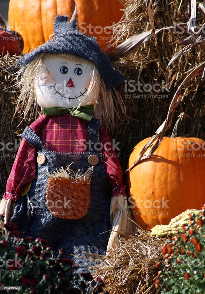 Scarecrow and Pumpkins royalty free stockfoto