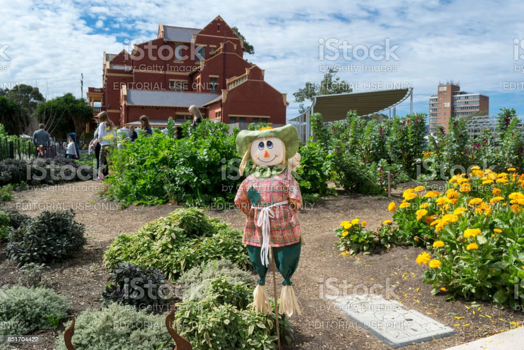 Scarecrow and Visitors in the Kitchen Garden, Adelaide Botanic Garden stock photo