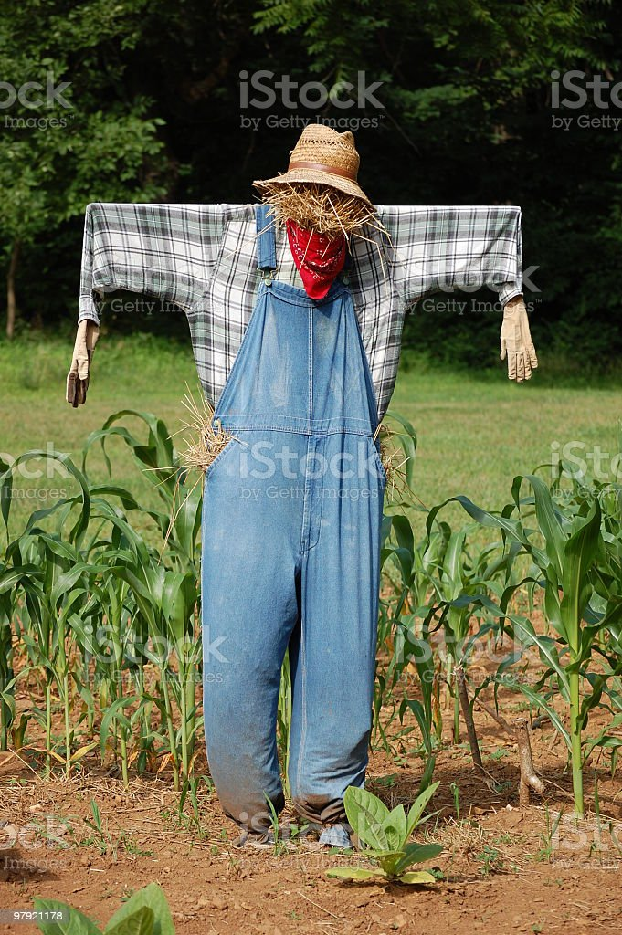 Scarecrow in the Garden royalty-free stock photo