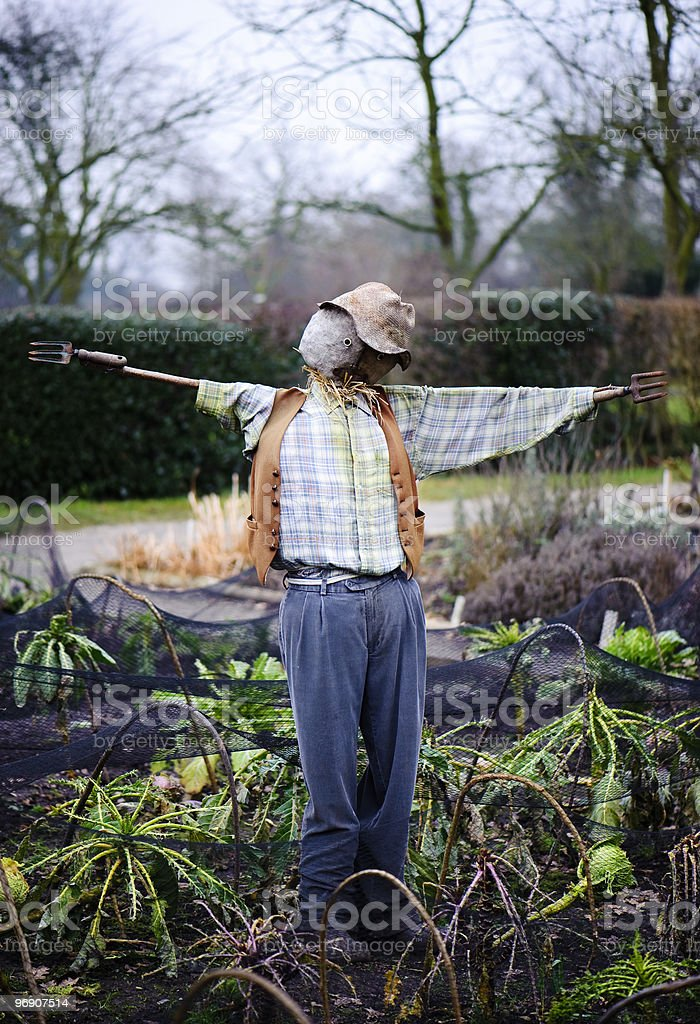 Scarecrow in vegetable patch royalty-free stock photo