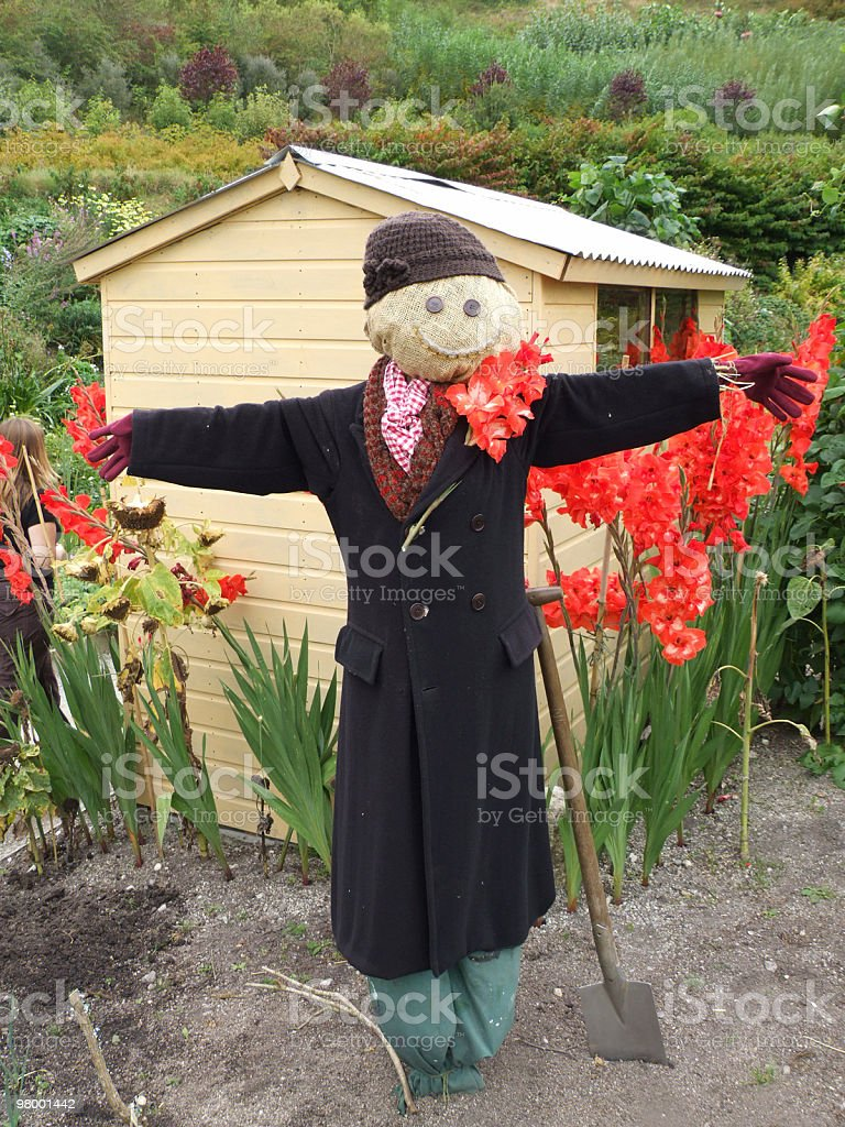 Scarecrow royalty free stockfoto