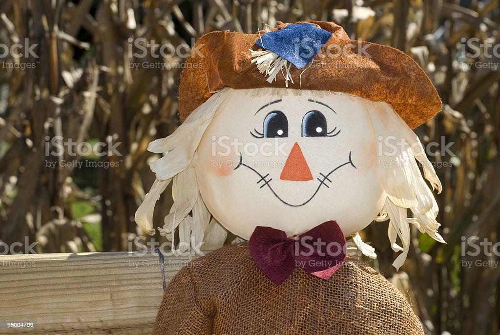 Scarecrow royalty free stockfoto
