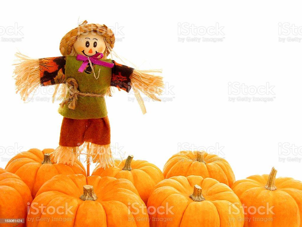 Scarecrow with autumn mini pumpkins stock photo